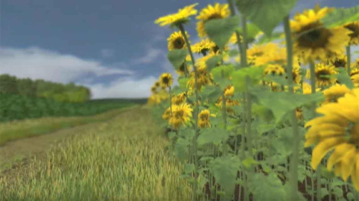 Biomass-in-future-landscapes.jpg